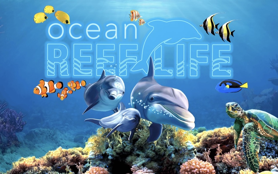 Updated New Ocean Reef Life Branding and Splash!